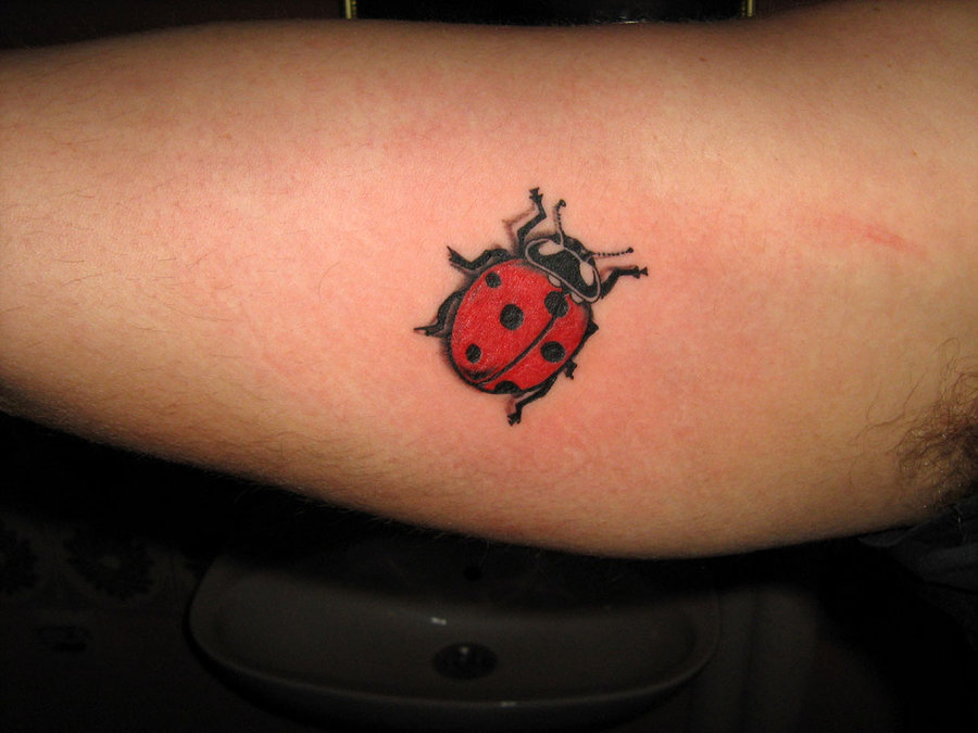 Beautiful Ladybug Tattoos With Lovely Meanings Tattoos Win