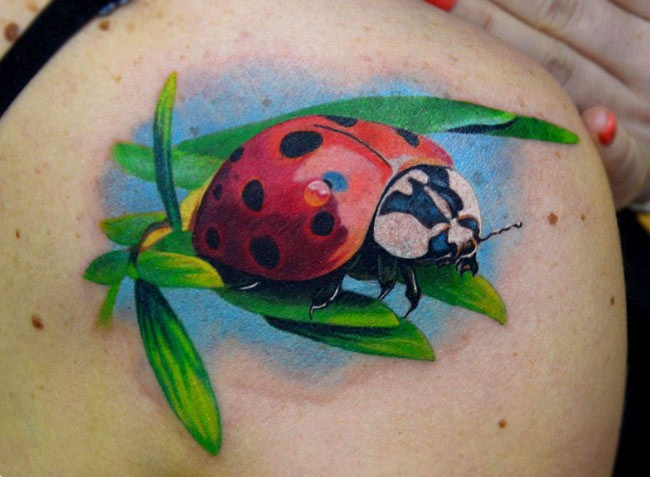 Ladybug tattoos with meanings