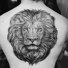 Lion tattoos and meanings