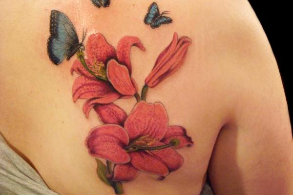 lilly-flower-and-butterfly