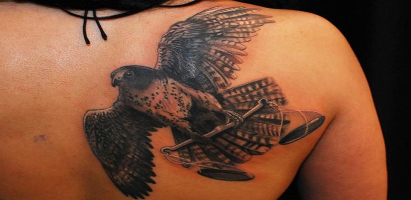 37 falcon tattoos with majestic meanings tattoos win for Higher ground tattoo
