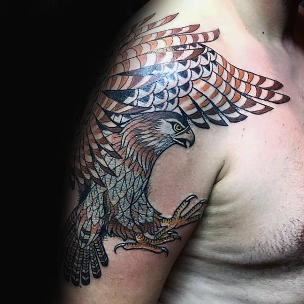 37 Falcon Tattoos With Majestic Meanings Tattoos Win