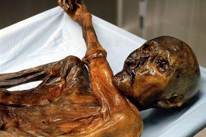 Otzi mummy tattoo