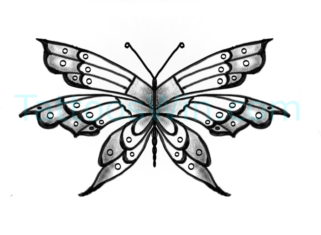 Unique Butterfly Tattoo Desings