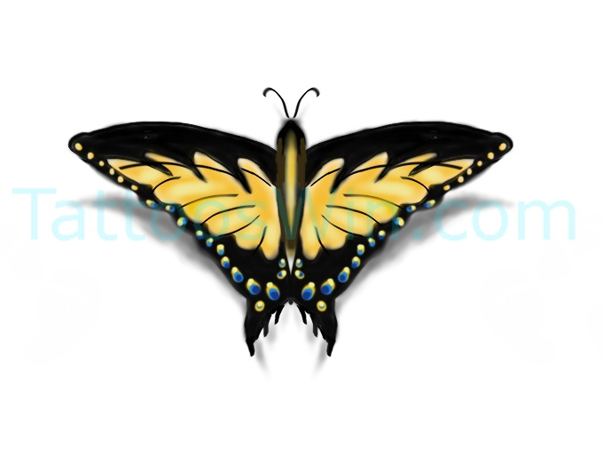 Colorful Butterfly Tattoo Desings