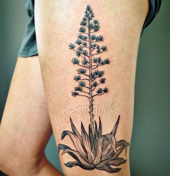 Agave with full Bloom Tattoo On Thigh for girls.